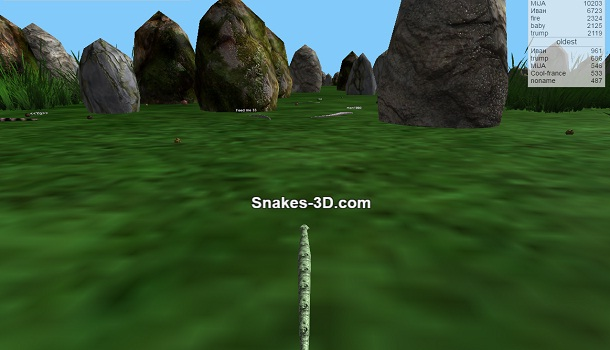 Play Snakes 3D Unblocked Online